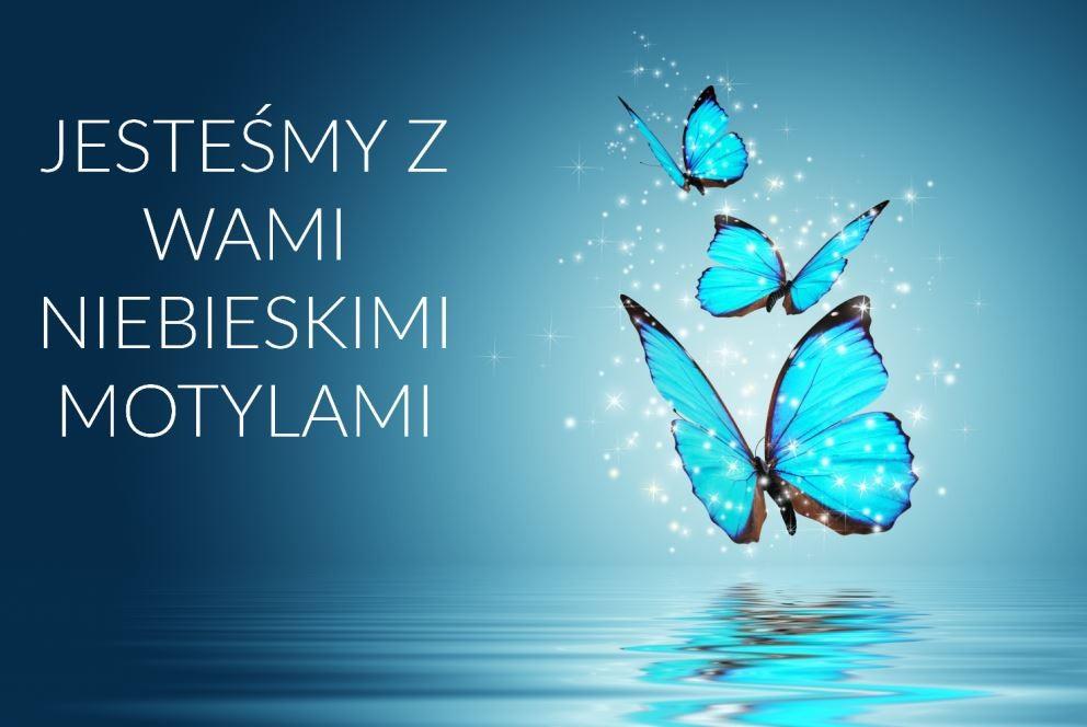 Motyle5