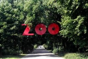 ZOO-790x395